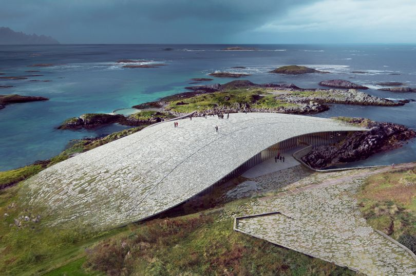 Stunning new whale watching venue to be built in Norway