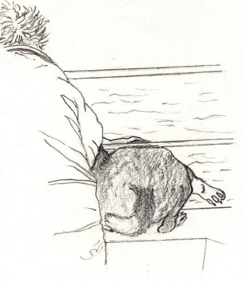 Rastus and human on deck