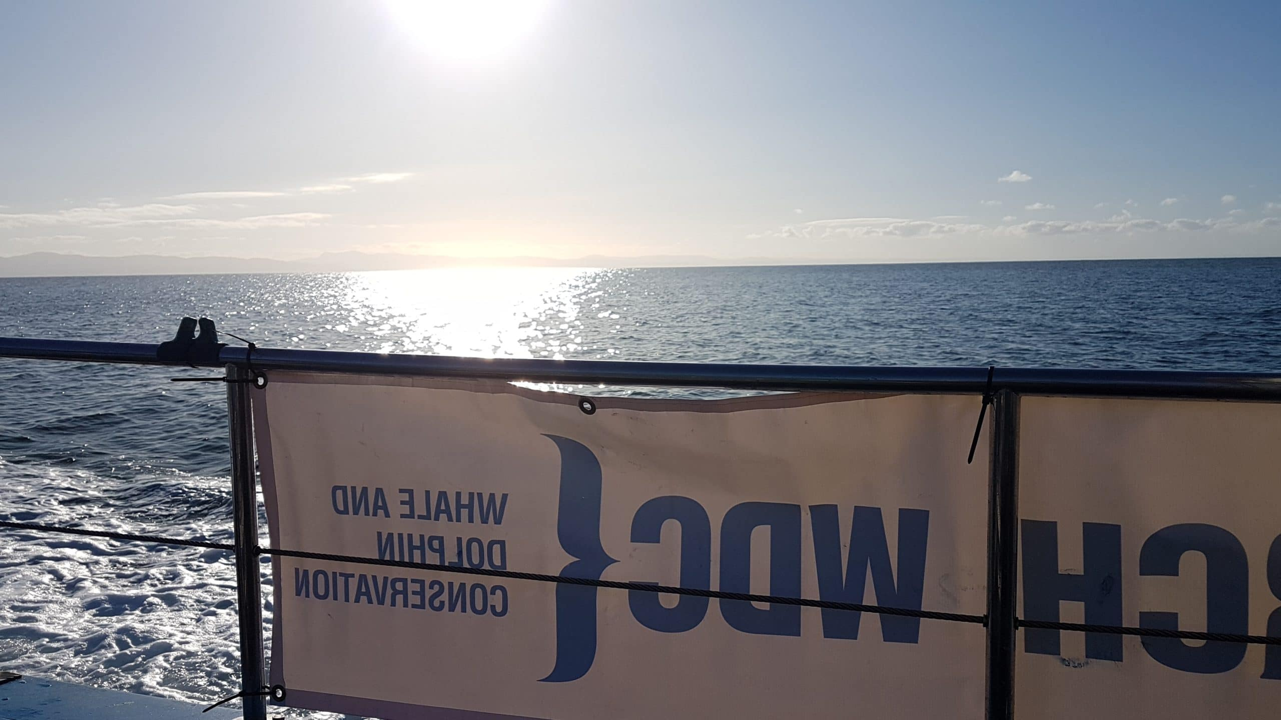 WDC banner on boat Bardsey WDC
