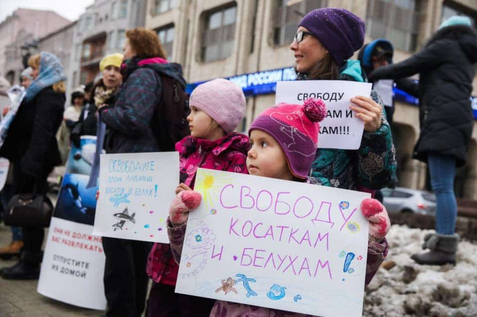 A new generation of protesters in Russia © FreeRussianWhales.org