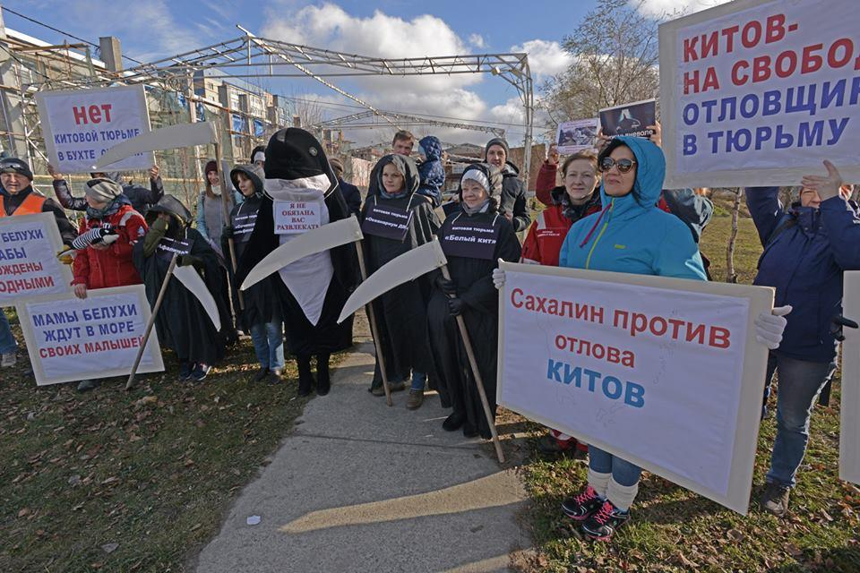 Russians protesting the whale jail © FreeRussianWhales.org