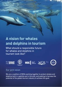 Vision for whales and dolphin in tourism report