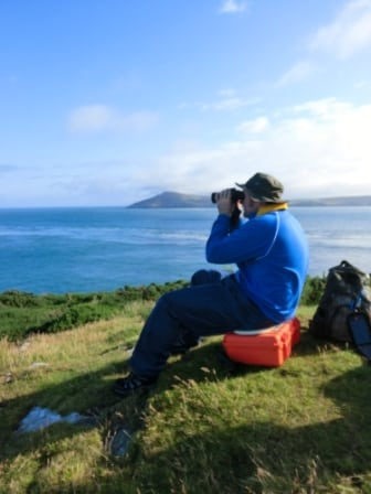 Looking for dolphins from Bardsey Island