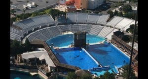 Holiday giant Thomas Cook stops selling tickets to Seaworld and Loro Parque