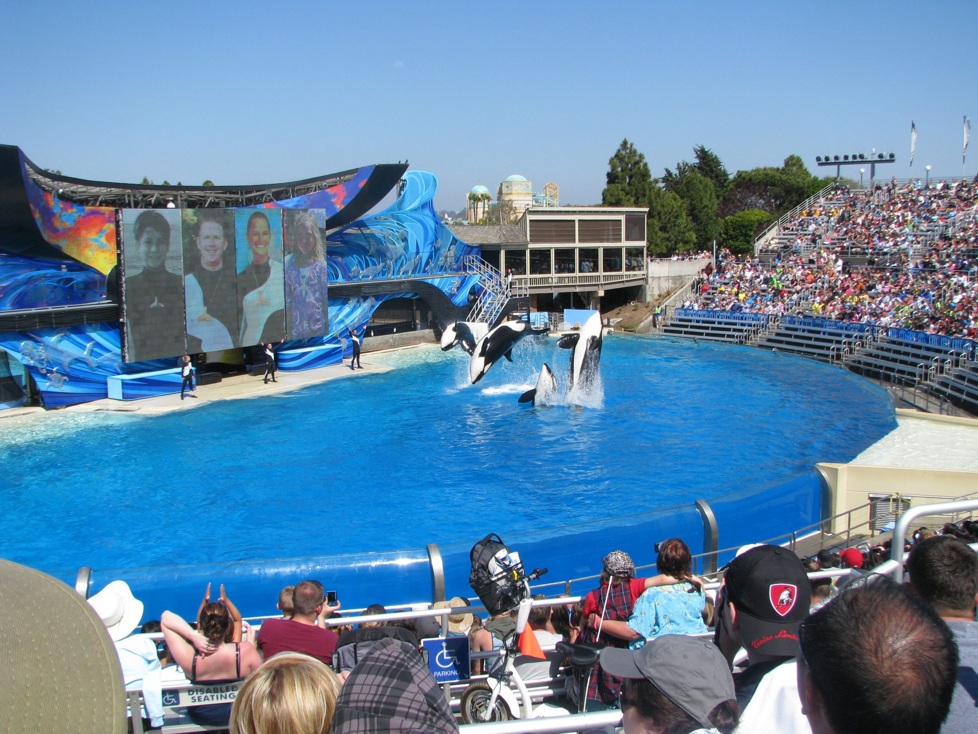 SeaWorld parts company with another CEO