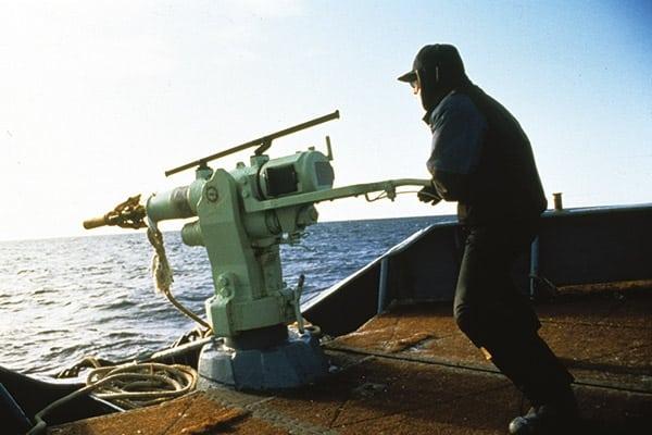 whaling13_mark-votier