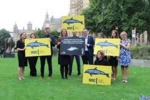WDC presents petition to UK Fisheries Minister to stop dolphin deaths in nets