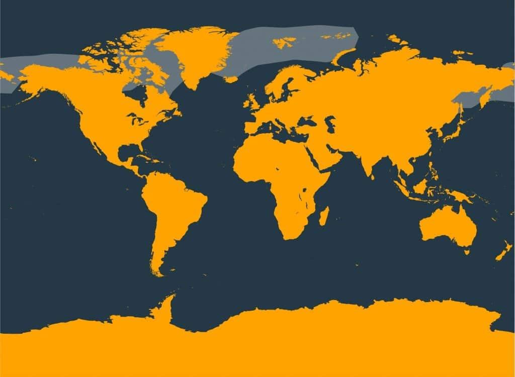 Bowhead whale distribution map