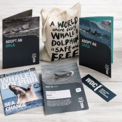 adopt an orca adult pack
