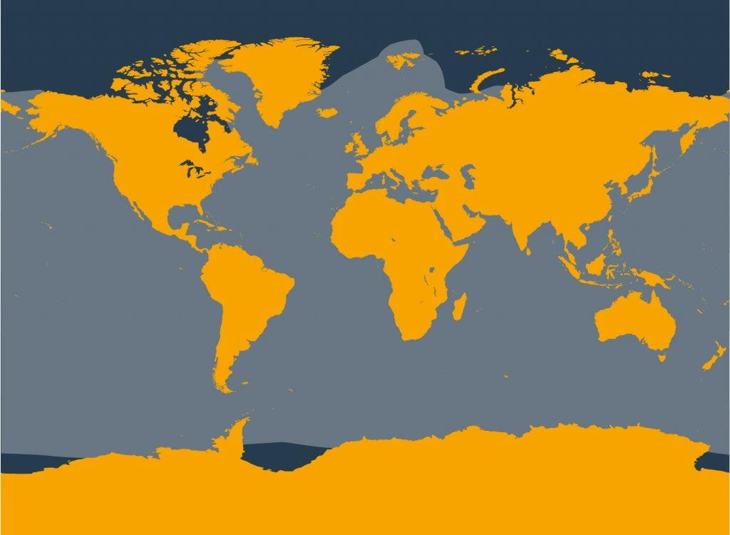 Common minke whale distribution map
