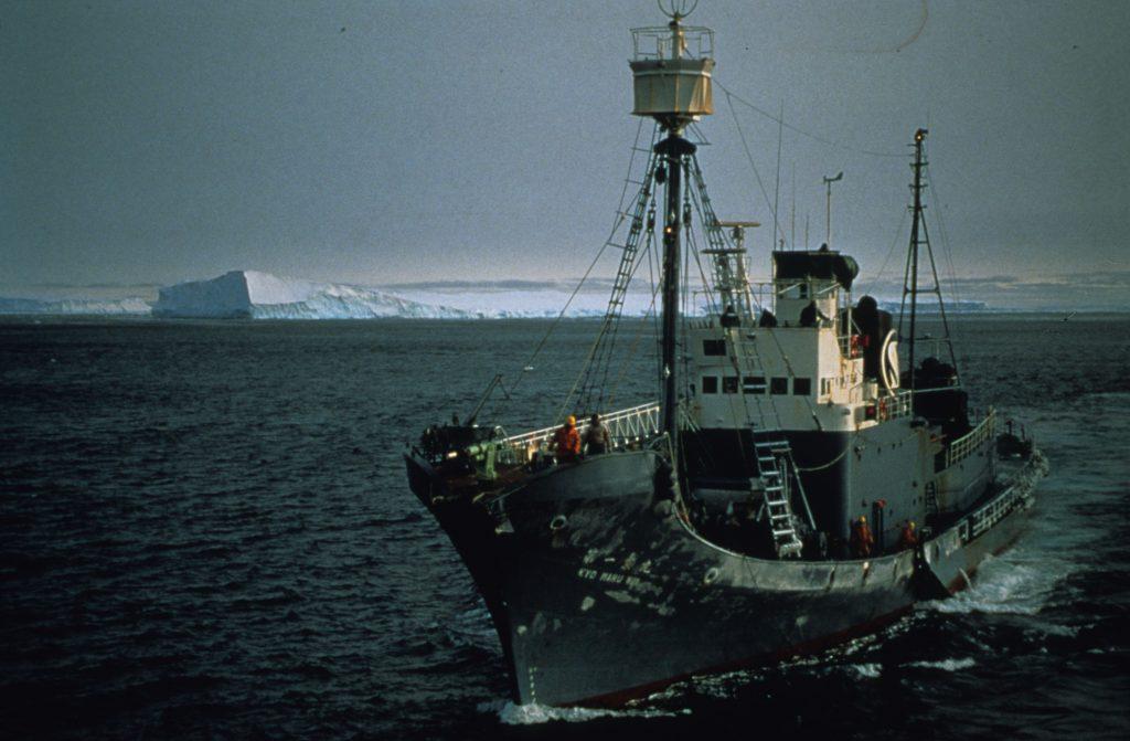 whalingship web
