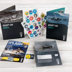 adopt an orca kids pack