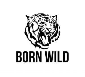 Tigerhead-logo-black-bigCUBELogo
