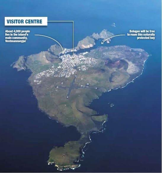 Aerial view of beluga sanctuary