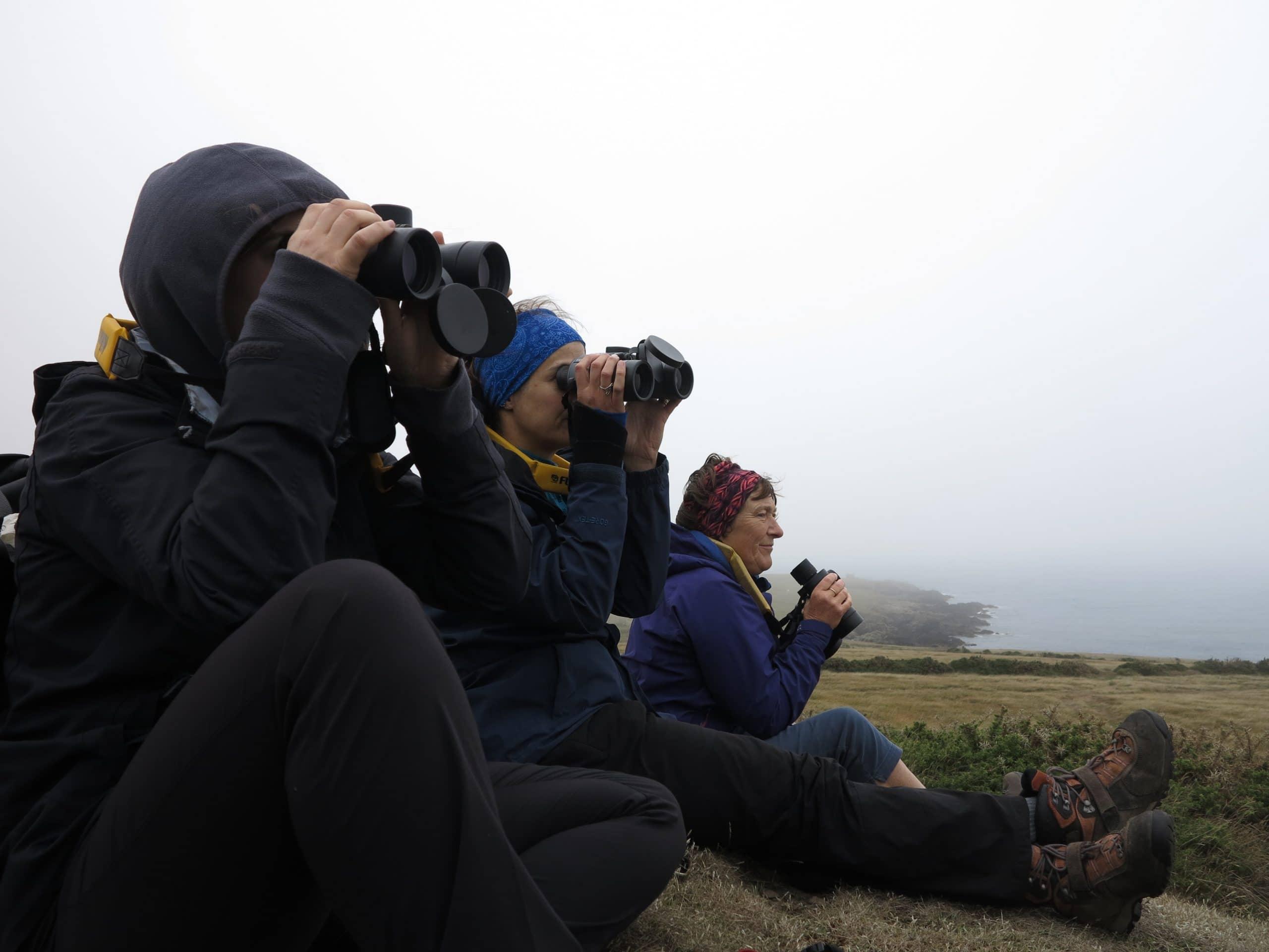 Volunteers with binoculars