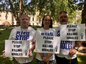 Please stop killing whales – WDC joins anti-whaling marches