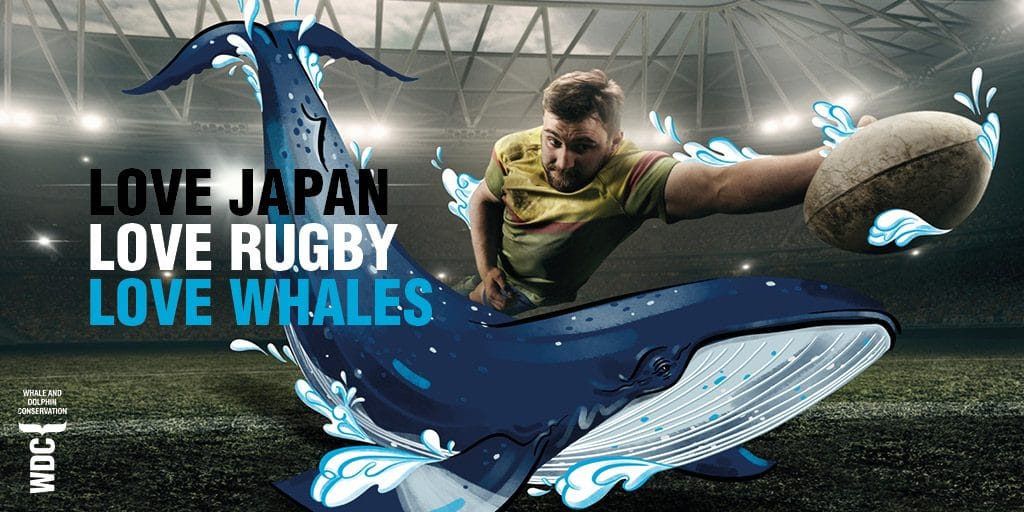 Rugby World Cup fans warned of whale meat risk