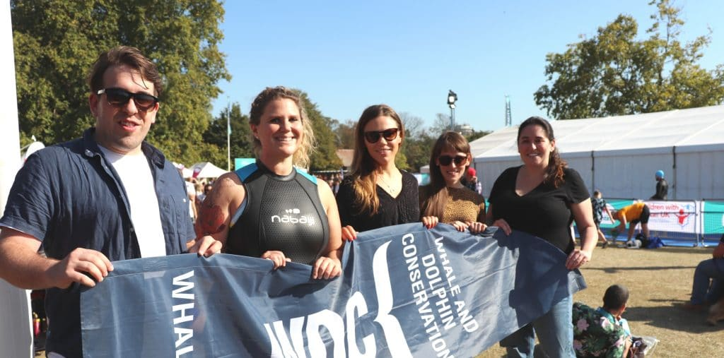 Swimmers raising funds for whales and dolphins
