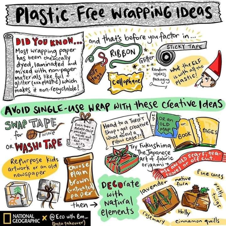 plastic free wrapping graphic