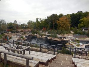 Captive dolphin at Nuremberg Zoo dies