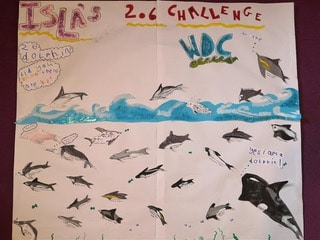 Isla learnt the names of 26 whale and dolphin species