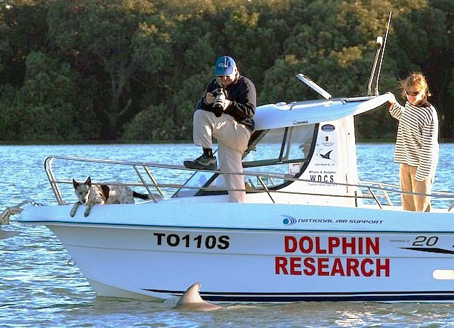 Out looking for dolphins in Adelaide