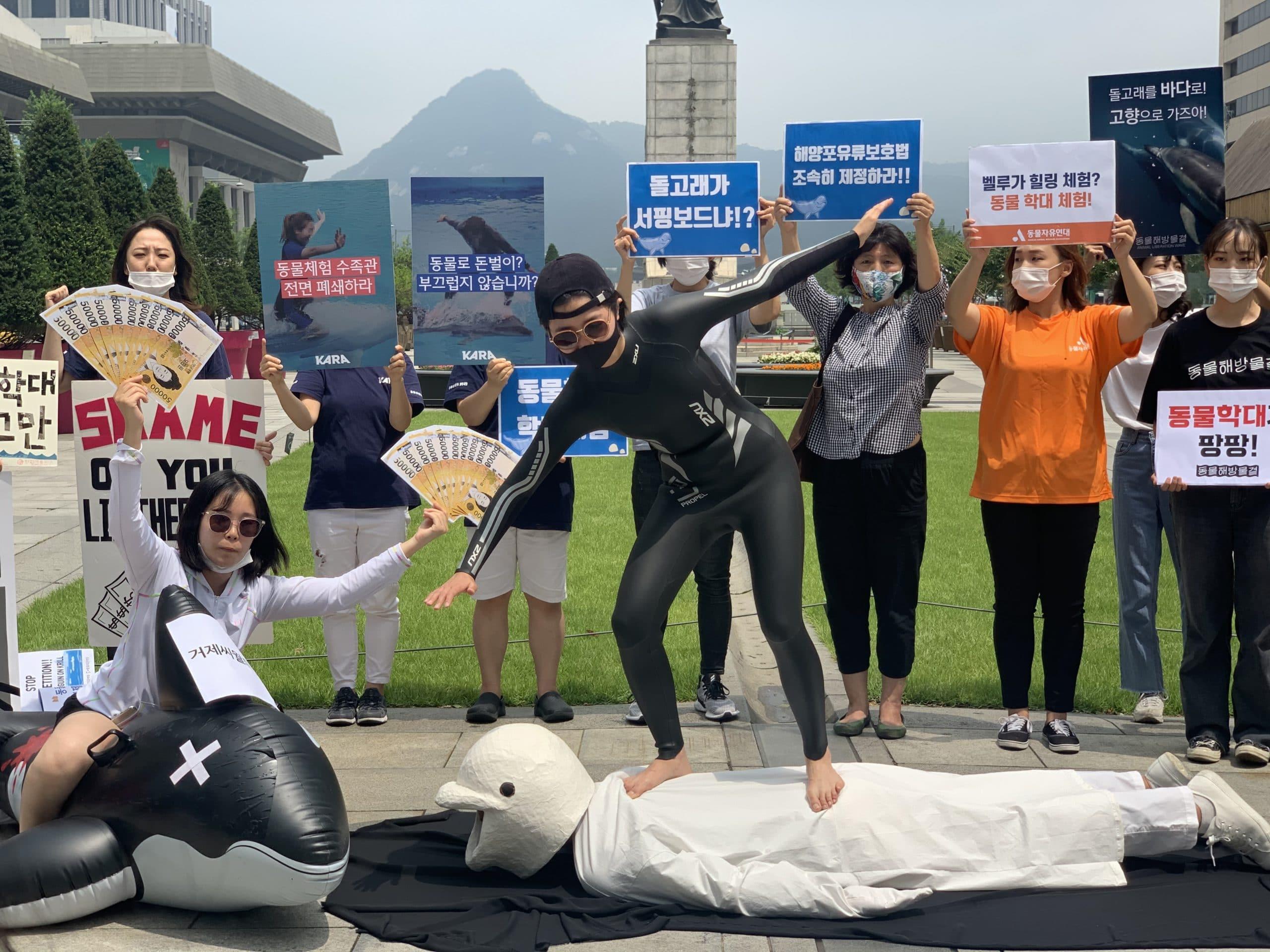 Protesters demand the closure of Geoje Sea World in South Korea © KAWA