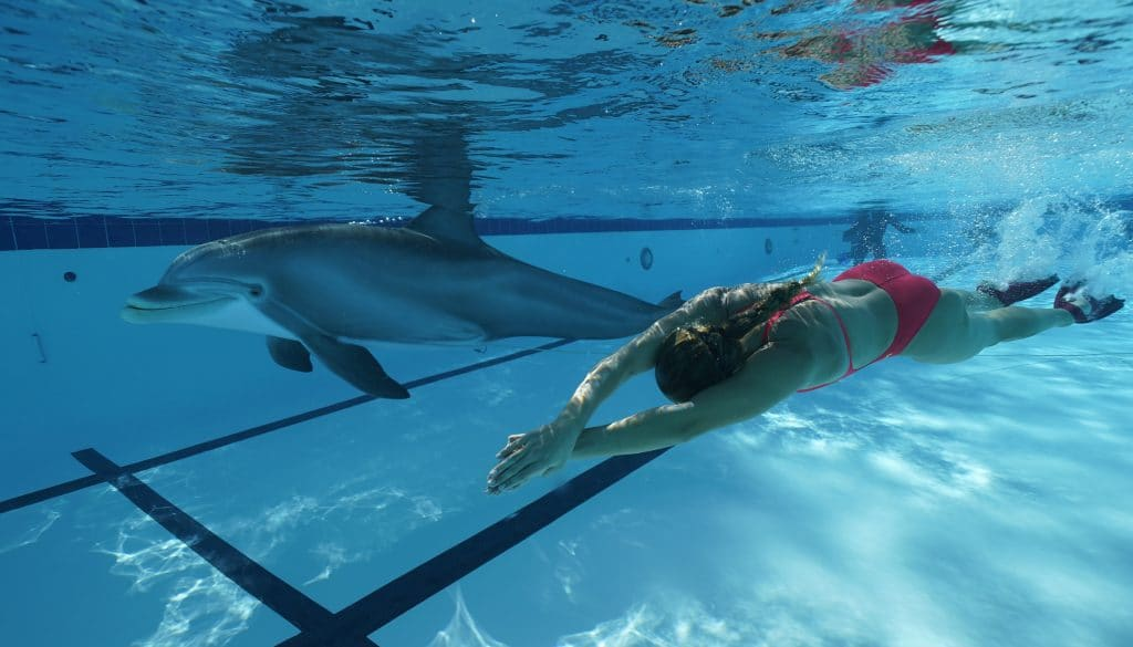 Robotic dolphin with swimmer © Edge Innovations