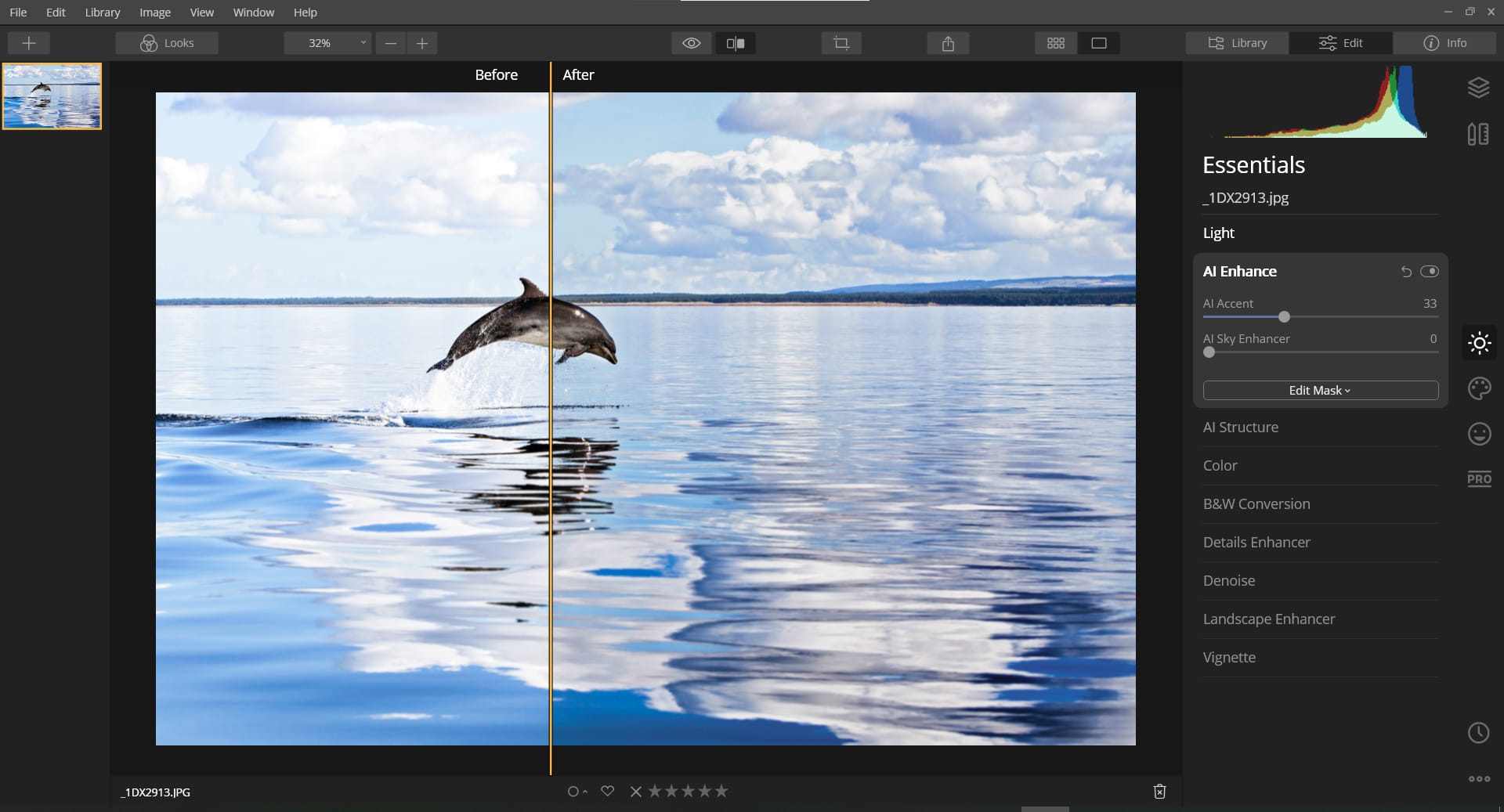 WDC Adopt a Dolphin field officer, Charlie Phillips' amazing photo transformations using Luminar 4