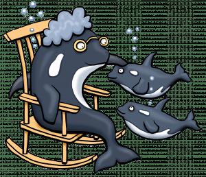 Orca-granny-s