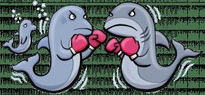 dolphin vs shark