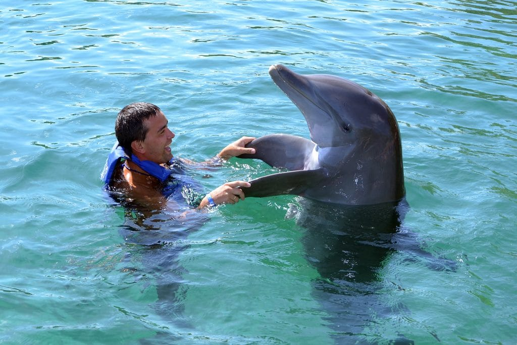 Man holding dolphins fins