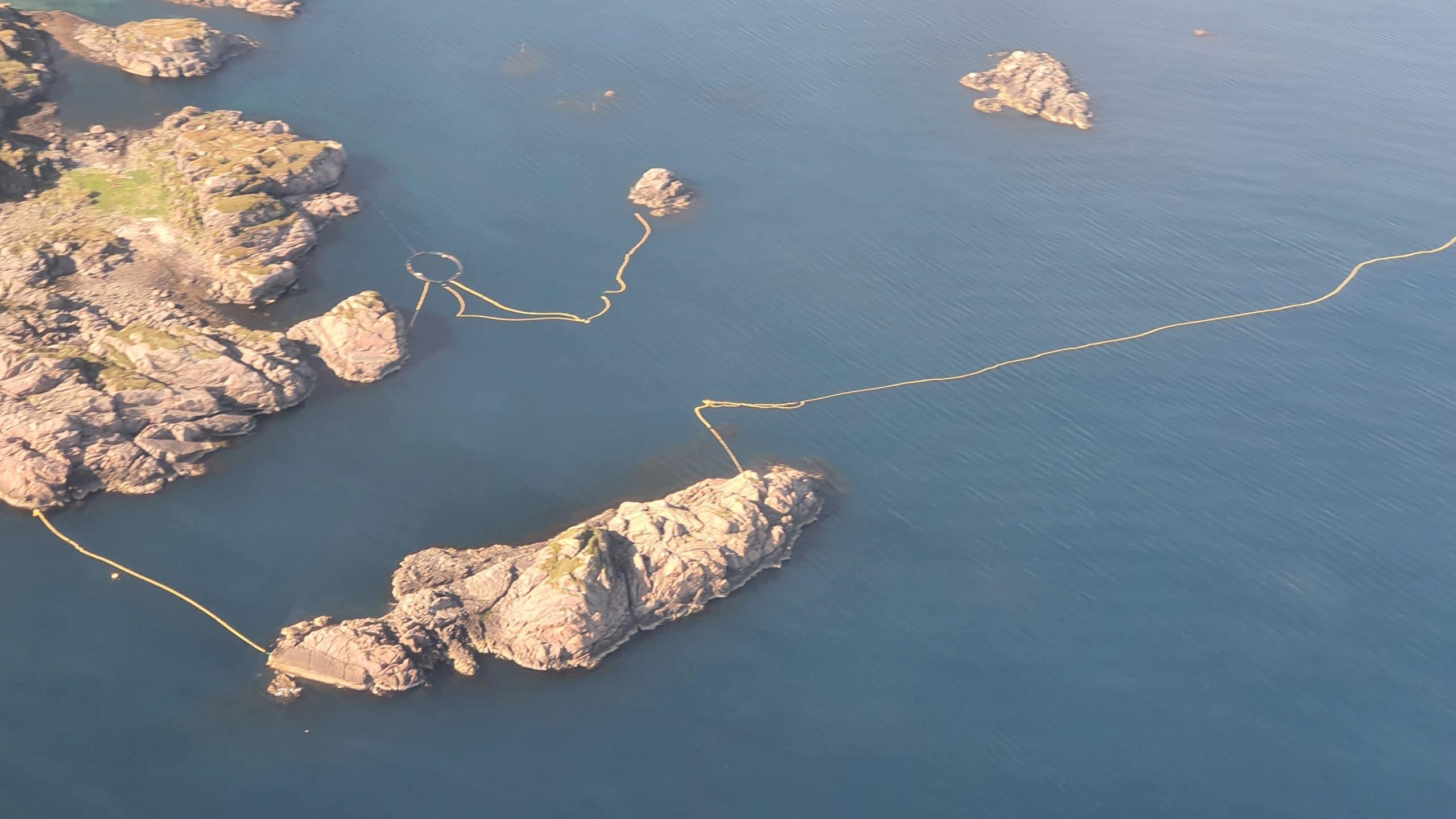 Nets set in Norway to catch minke whales