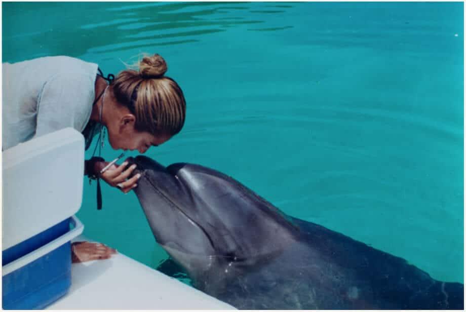 Dolphin Makaido © Kya López