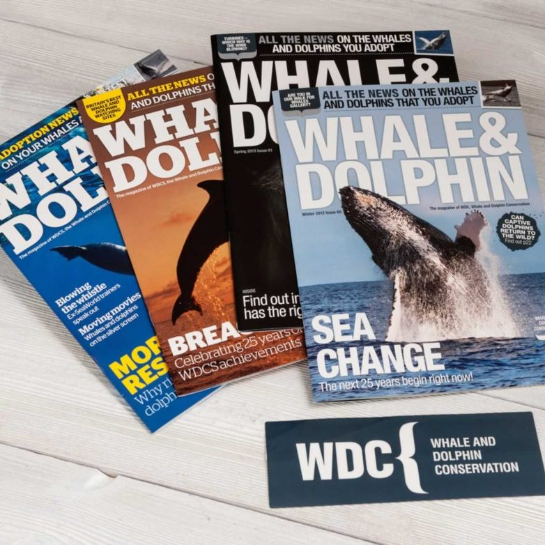 Whale and Dolphin magazine