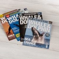 Whale & Dolphin magazine (4 editions)