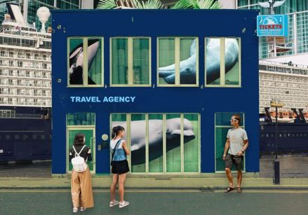 End whale and dolphin captivity