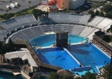 sea_world_orlando_rob_lott